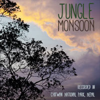 Jungle Monsoon