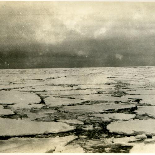 Rothera Point - Isen