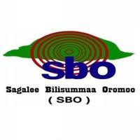 SBO Caamsaa 17, 2015. Oduu, Waamicha FDG Qeerroo Bilisummaa Oromoo  irraa ...